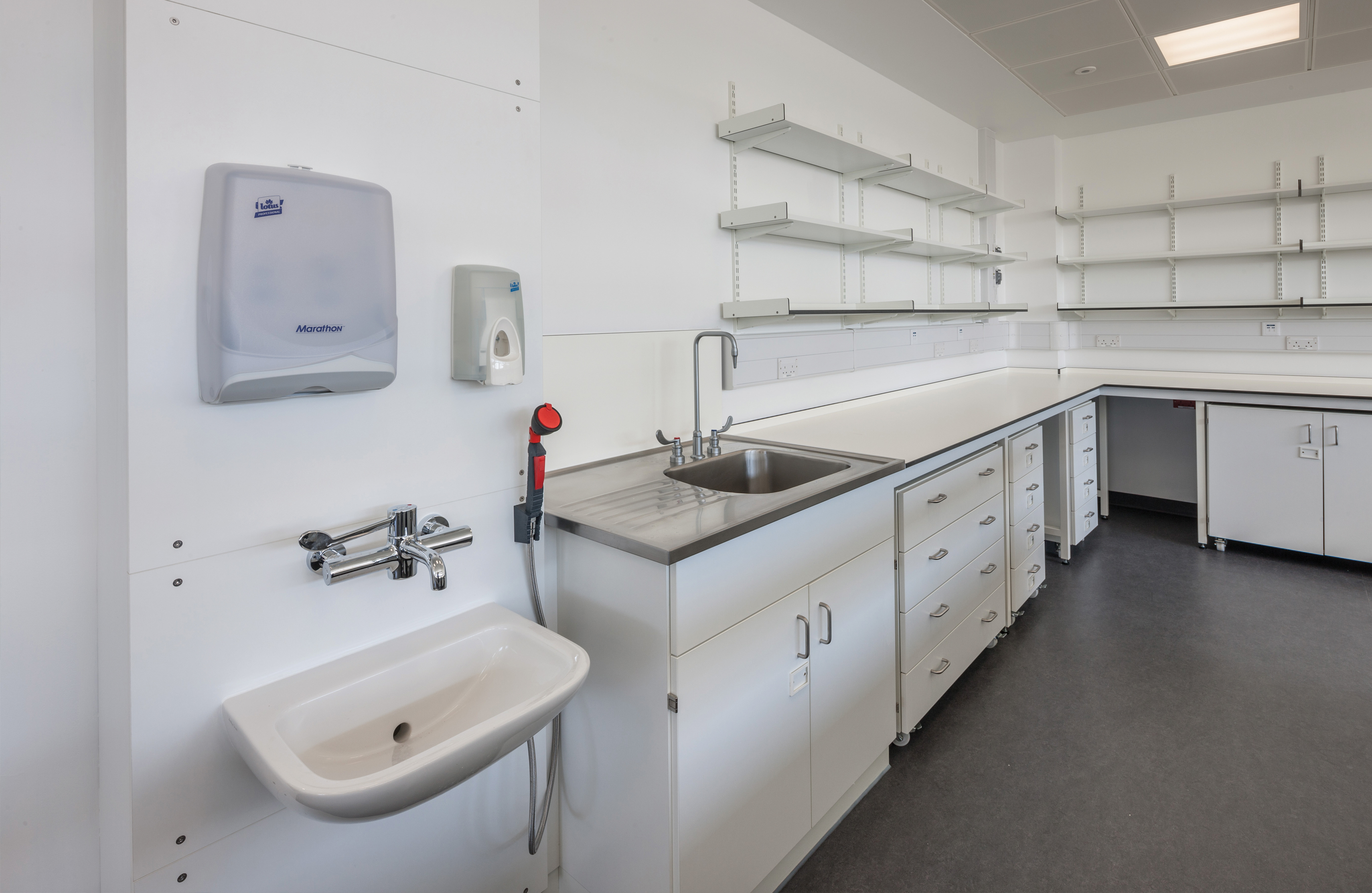 Industrial laboratory sink options